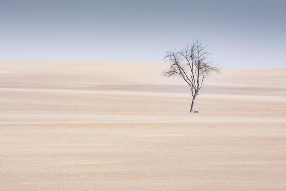 Dubai desert nieuw-7.jpg