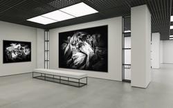 untitled-untitled (2)
