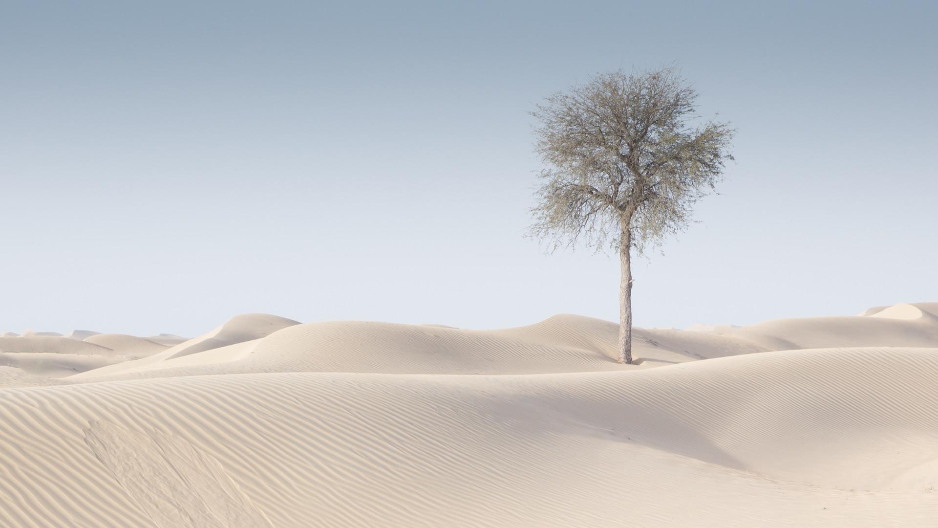 Dubai desert nieuw-6.jpg