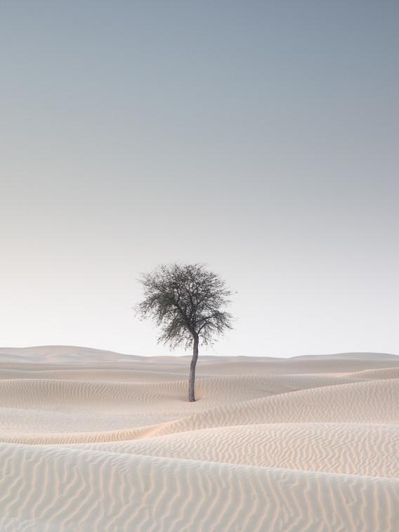 Dubai desert nieuw-1.jpg
