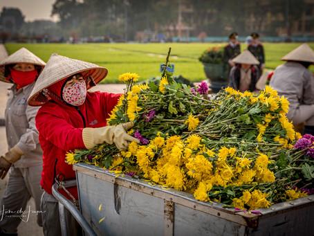 Dag 1/2 Vietnam: Hanoi, Ho Chi Minh Complex