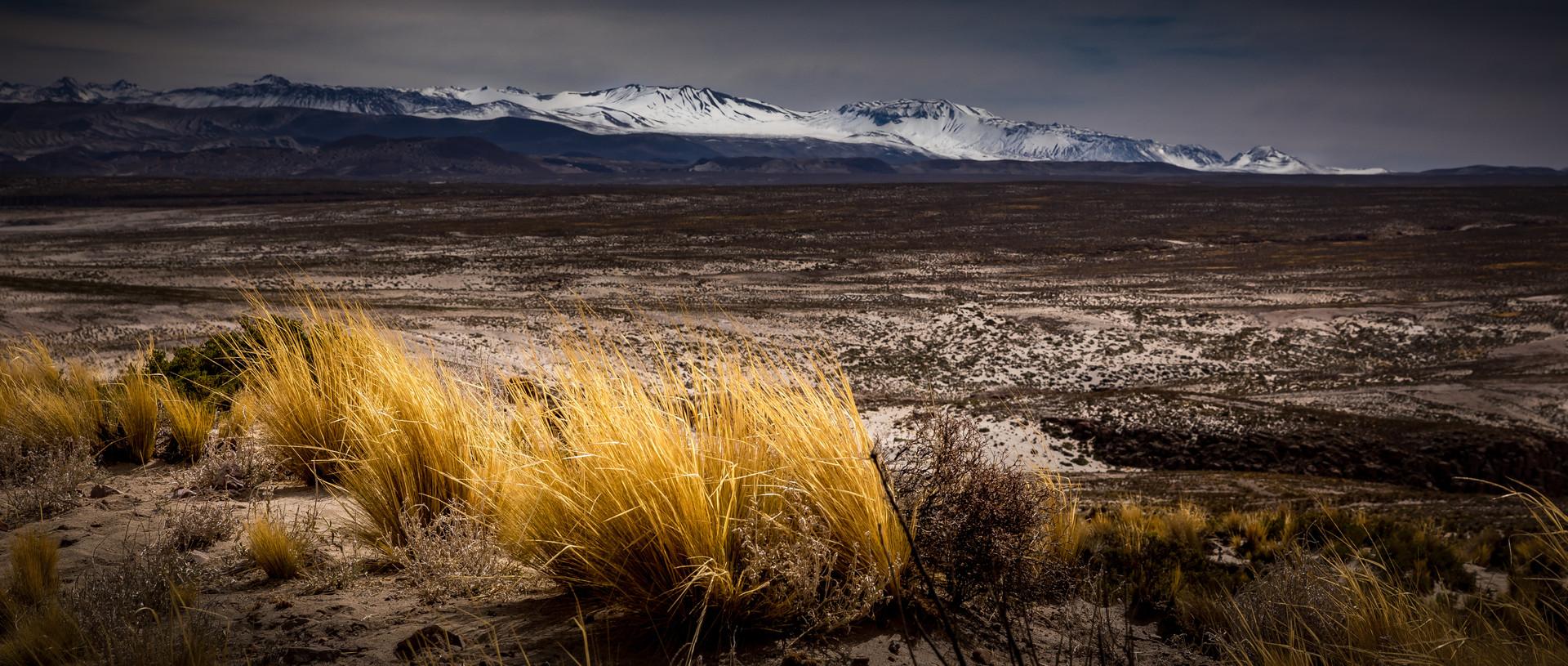 landschap onderweg-50.jpg