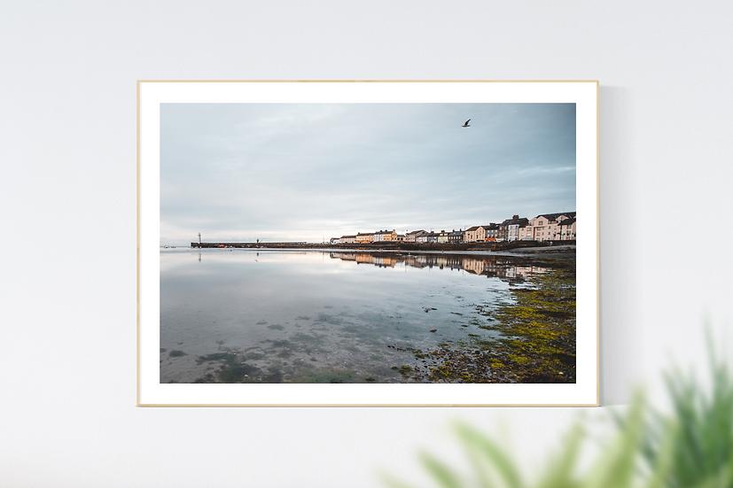 Donaghadee Harbour #2