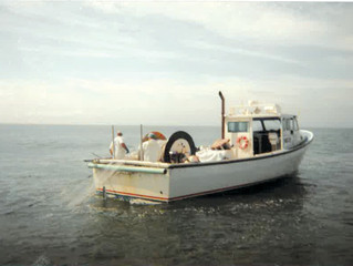 Commercial Fishing in NY and Alaska
