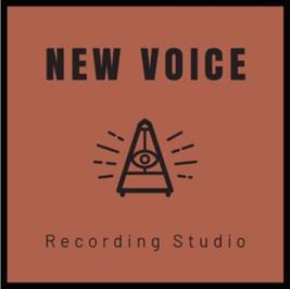 Logo vom New voice recording studio