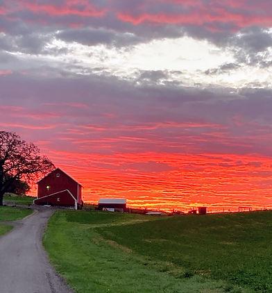 Sunrise on the Farm.jpg