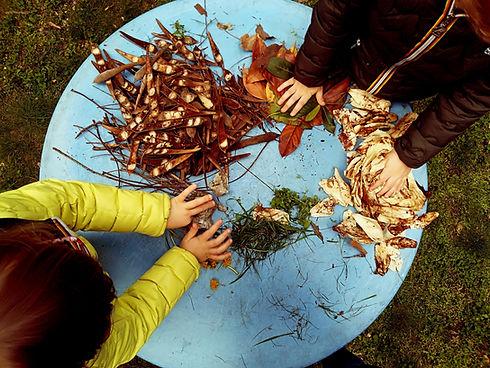 forestschool-shutterstock_1222084804_edi