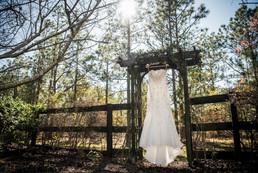 dress on arbor.jpg