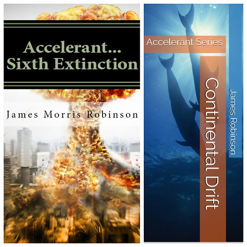 The Accelerant Series