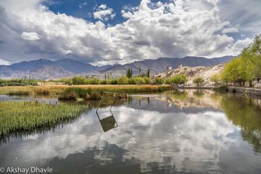 fish pond - leh.jpg