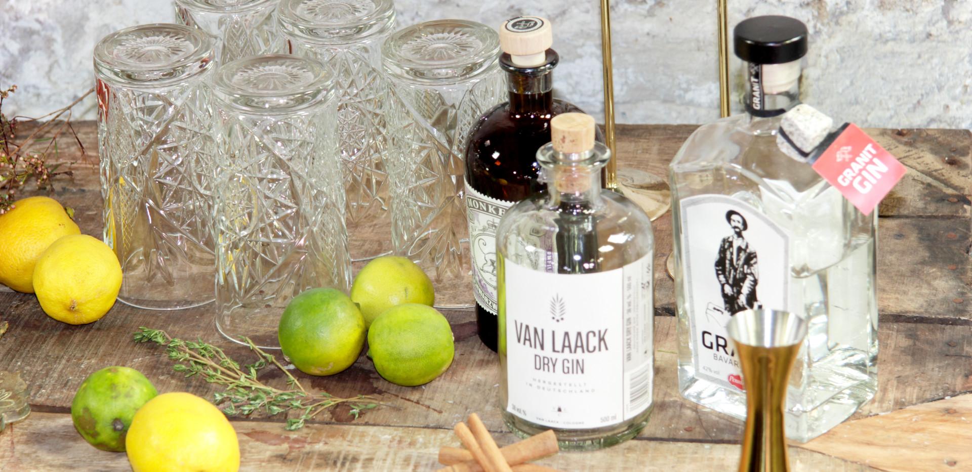 Leere Ginflaschen (Deko) - Stk. 1,00 Euro