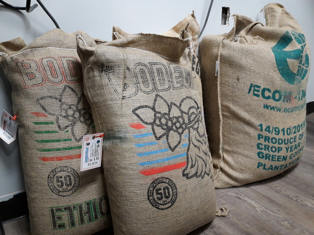 Single origin raw coffee beans from importer