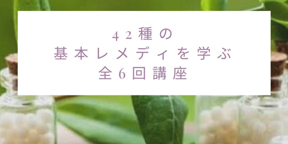 [神戸]ホメオパシーのレメディキットを自分で使いこなせるようになる講座 第3回目 (1)
