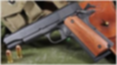pistol with grips.png