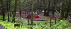 Frozen Head Primitive Camping
