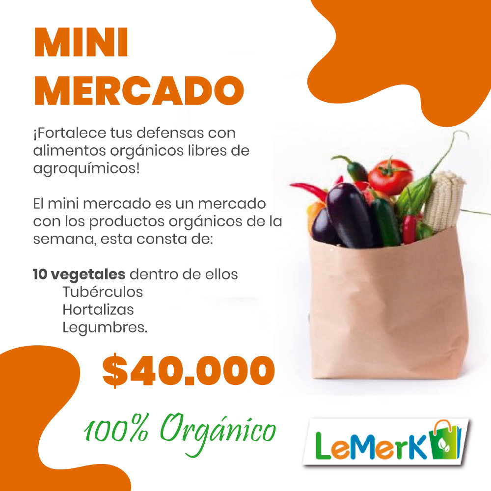 MINI MERCADO LEMERK