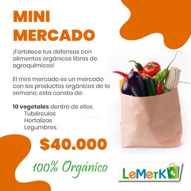 MINI MERCADO LEMERK