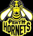 PerthHornets.png