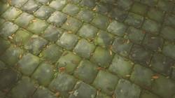 LeafyStones_01
