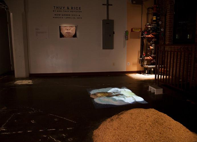 Thuy & Rice Installation