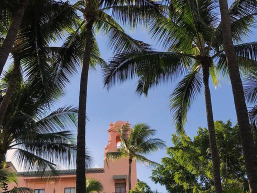 ハワイに撮影に行きました。