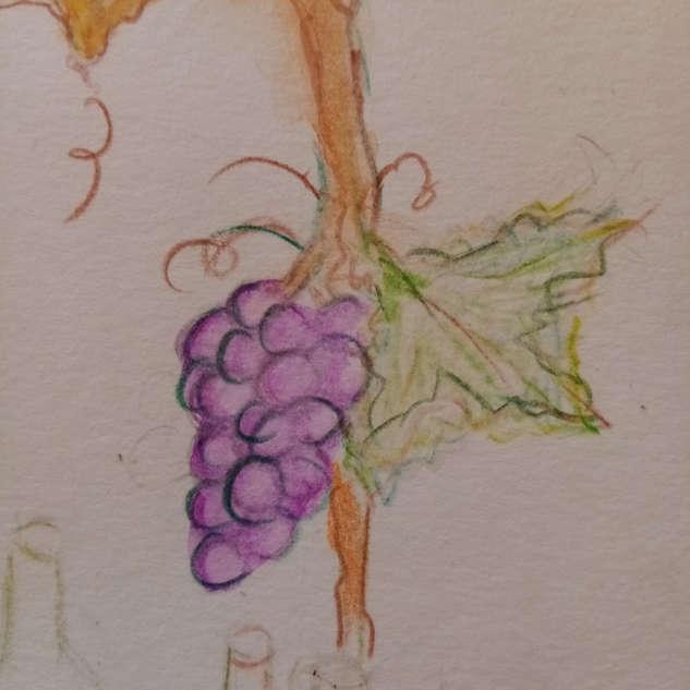 grappes raisins  1.jpg