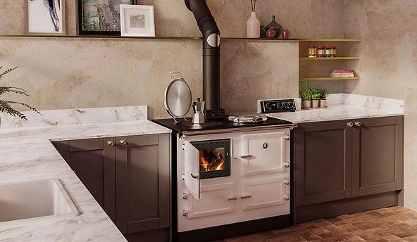 esse-990-hybrid-cooker.jpg
