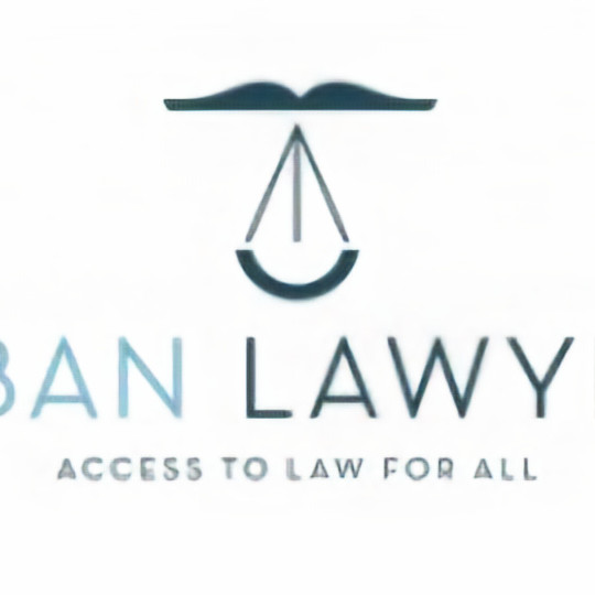 Through the Lens of In House Pro Bono Lawyers