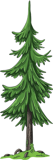 Medium Tree.png