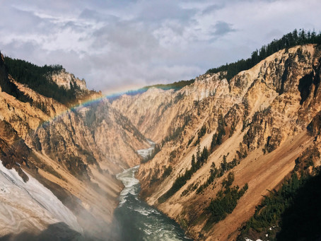 Yellowstone Park Road Construction