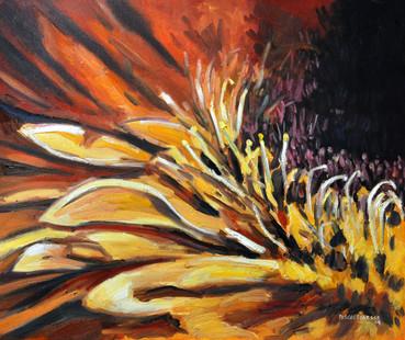 Yellow petals - 2009
