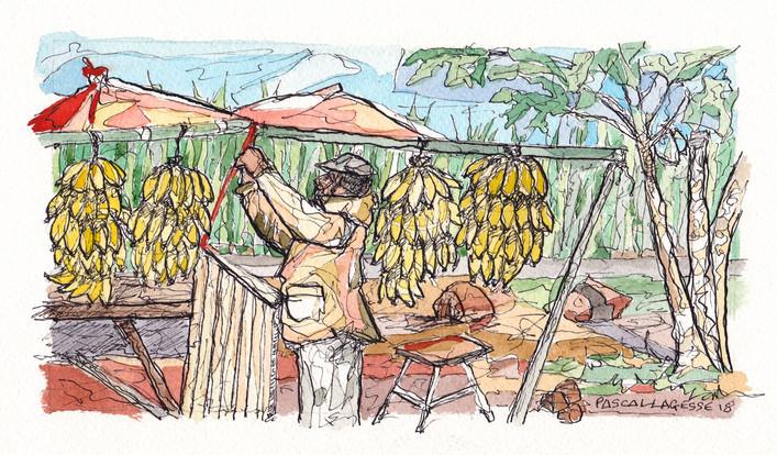 Banana seller - 2018