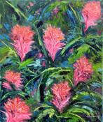 Protea flowers - 2015