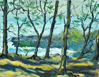 Filao trees in Souillac