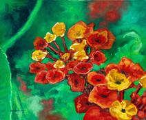 Lantana flowers - 2009
