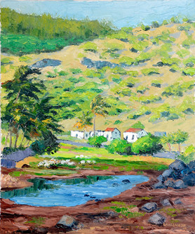 Anse Ally Valley - Rodrigues - 2015