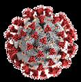 Coronavirus-COVID-19_edited_edited.png