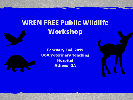 Wildlife Workshop - Open to the Public