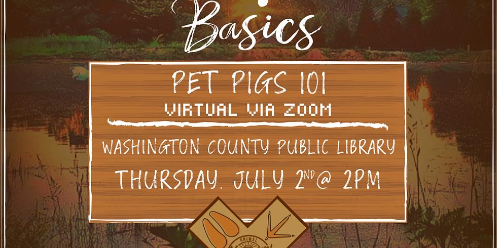 Pet Pigs 101