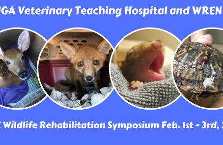 FREE Wildlife Rehab Symposium