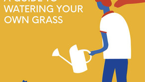A Guide to Watering Your Own Grass