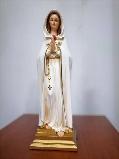 Virgen Rosa Mística