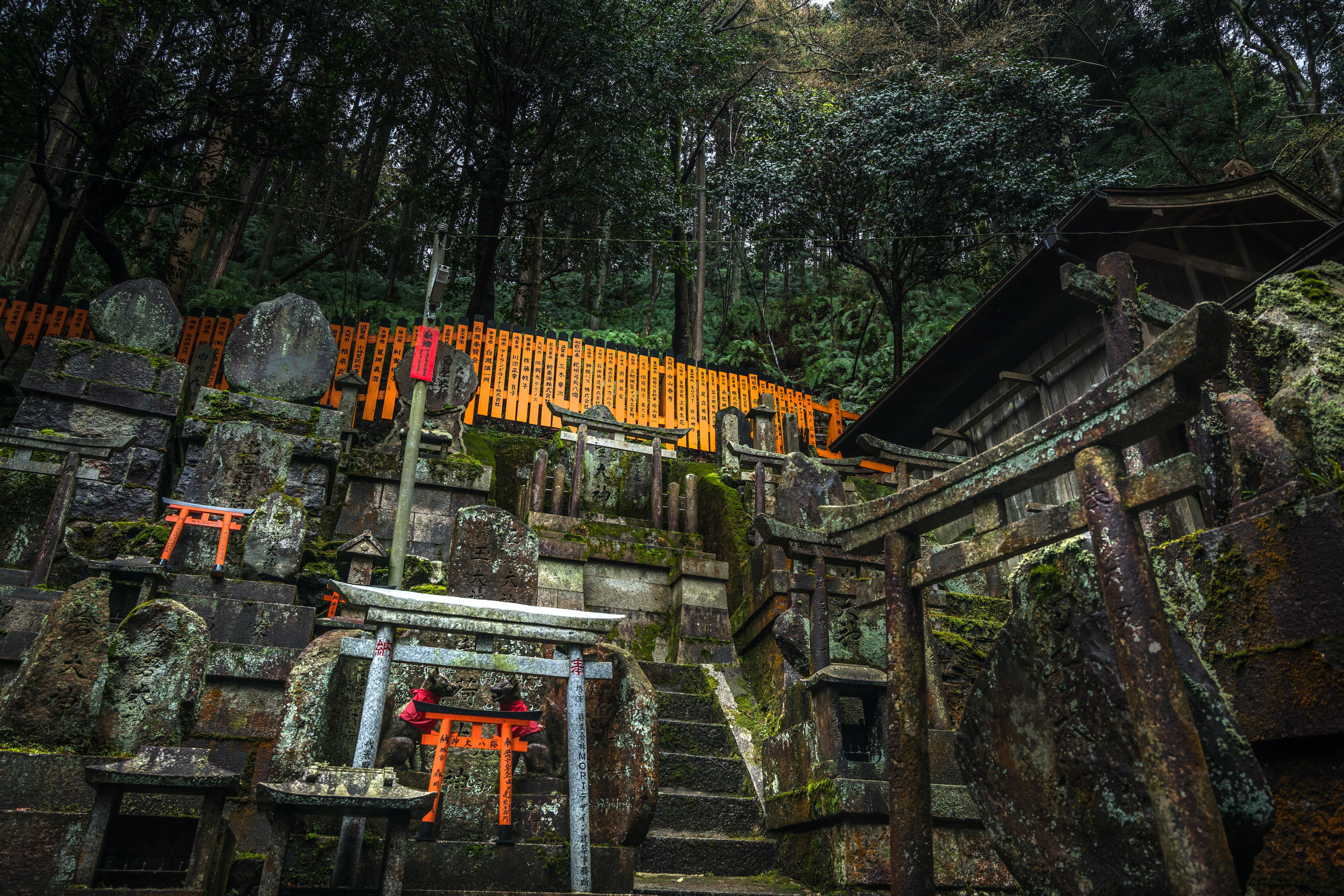 Japan Kyoto Shrine