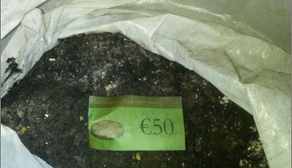 Broneirion - 50 Euro casino voucher found in the deposits!