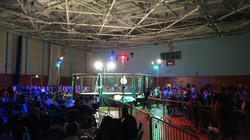 BUDO MMA Lighting