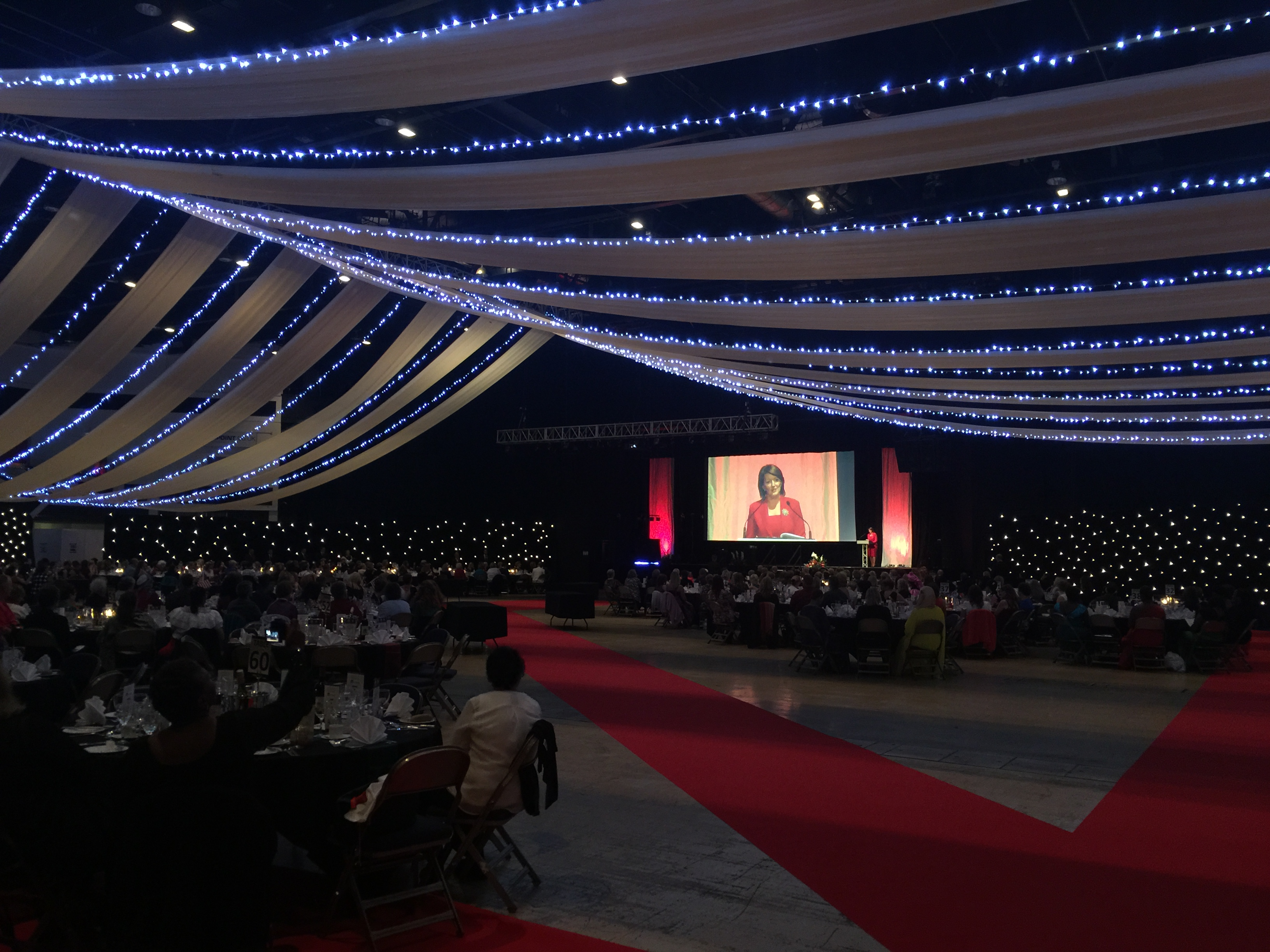 Roof draping and Large Screen Dinner