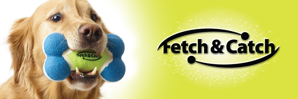 FetchCatch_Web.jpg