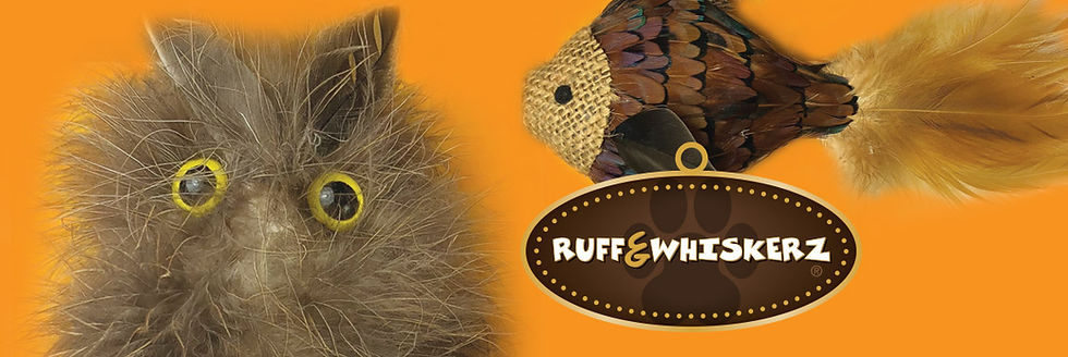 RuffWhiskers_Cat_Web.jpg