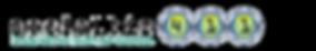 Socialbiz411 logo