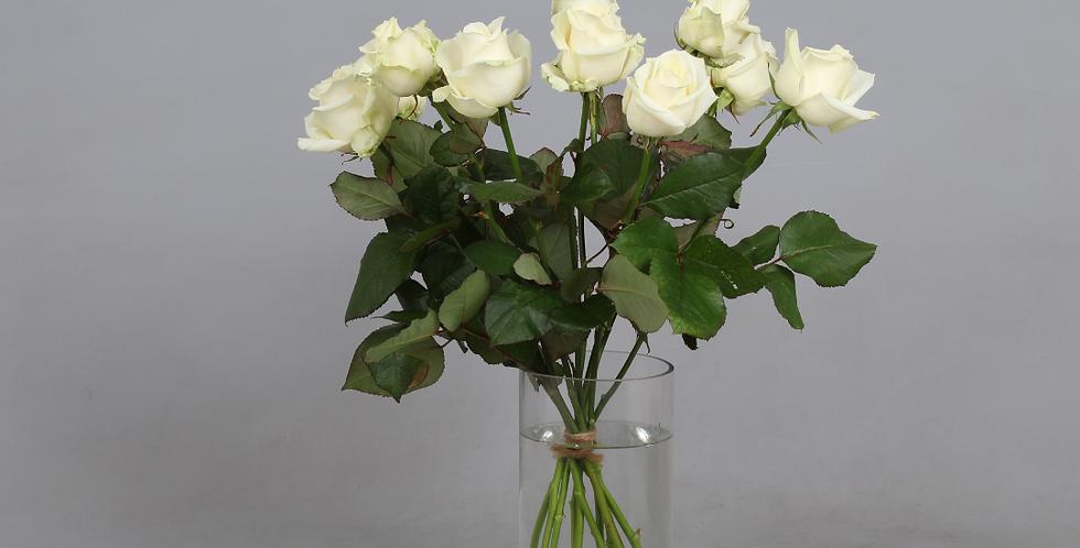 Witte Avalanche rozen